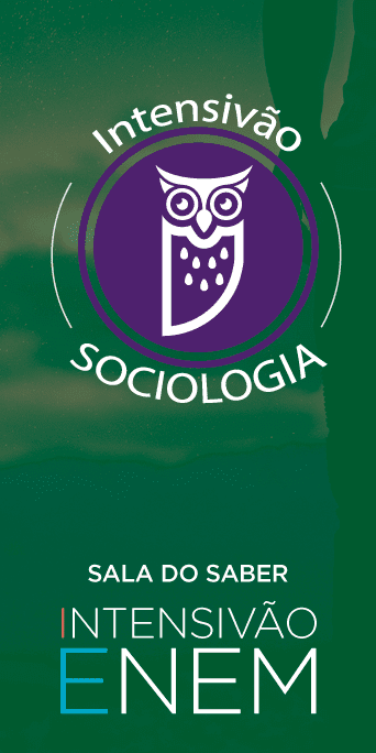 Intensivão 2020: Sociologia