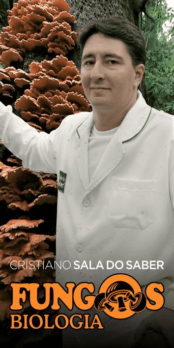 ENEM - Fungos